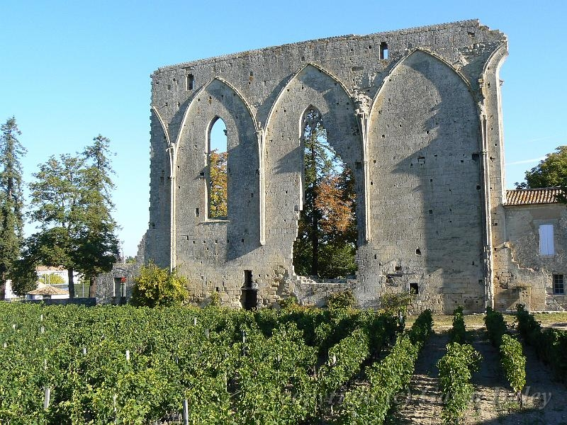 Best of the Saint-Emilion Wines